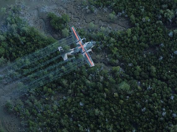 A plane sprays defoliant over trees in Vietnam