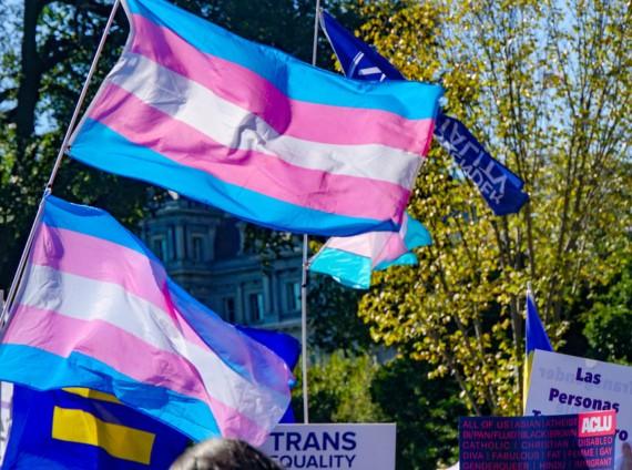 Transgender pride flags